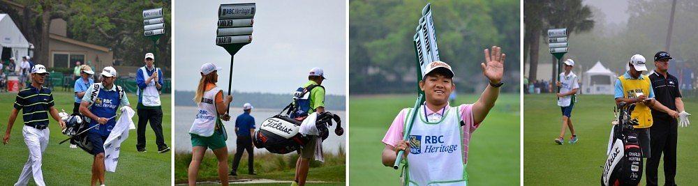 RBC collage